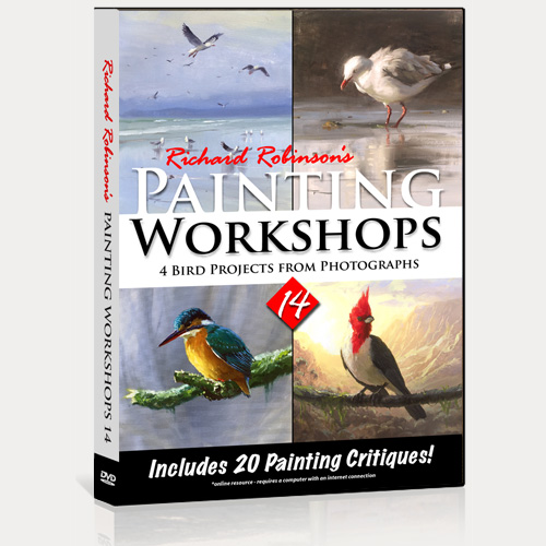 Painting Workshops 14 DVD